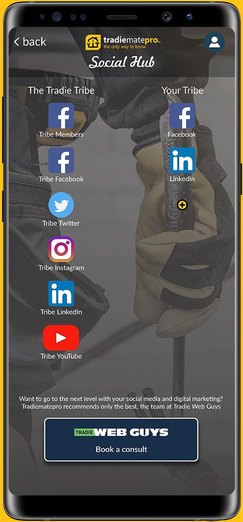 tradiematepro social feed